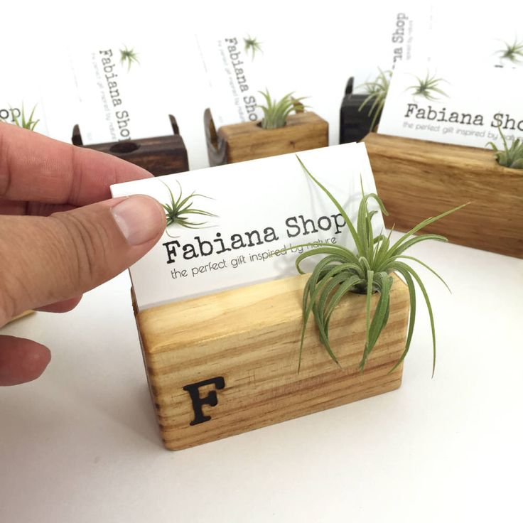 Business Card Holder, Desk Decor, Office Decor, Recipe Card Holder With Air Plant, Upcycled, 1 Character Personalized, Air Plant Desk. by FabianaShop on Etsy https://www.etsy.com/listing/266444000/business-card-holder-desk-decor-office