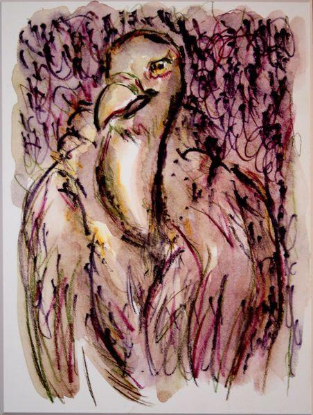 'Geier 3' von funkyzoo bei artflakes.com als Poster oder Kunstdruck $21.56
