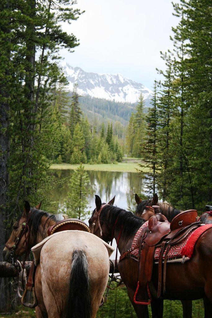 Make sure to get back on a horse and start horseback riding again. Best thing ever, horseback riding in the mountains! Beautiful lake and snow covered mountain top in the background. You can almost smell the fresh air!