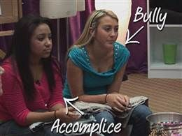 Diary of a Middle School Counselor: Bullying Lesson Plan