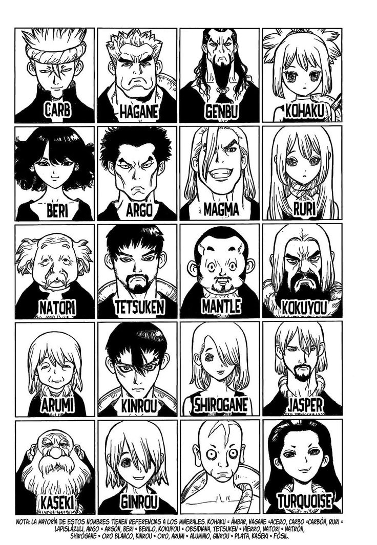 Dr.Stone manga by Riichiro Inagaki (autor) and BOICHI (artist).