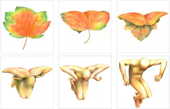 Pink Floyd - The Wall. The well known Leaf Man sequence from Wish You Were Here showing the tumbling leaf turning into the tumbling man.