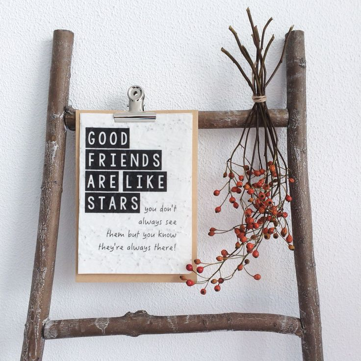 // Leg de Greet & Seed Card in het voorjaar op aarde en bedek het met een dun laagje aarde. Geef het water & liefde en voor je het weet staat het kaartje vol bloemen!