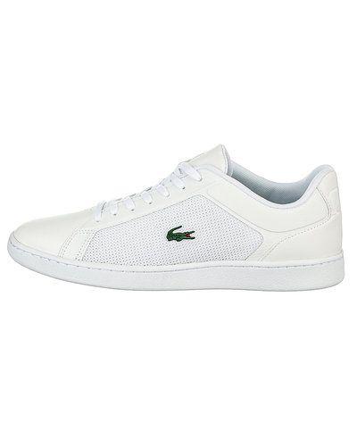 De sejeste Lacoste Endliner sneakers Lacoste Sneakers til Herrer til hverdag og fest