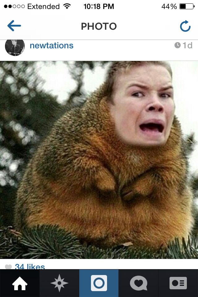 Will Poulter...this just made me laugh soooo much.