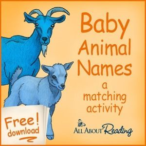 Baby Animal Names Matching printable - simple learning activity includes a few animals that you won't see in a typical matching game, including a raccoon and a kangaroo. Just match the animal babies with their mommas!