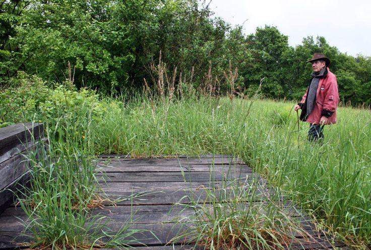 Les 97 meilleures images du tableau gilles cl ment for Jardinier paysagiste 71