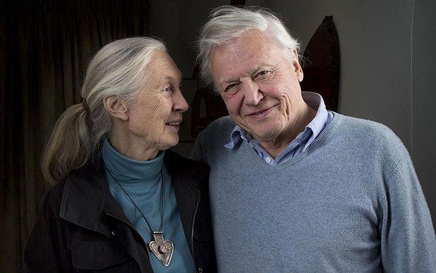 Jane Goodall & David Attenborough