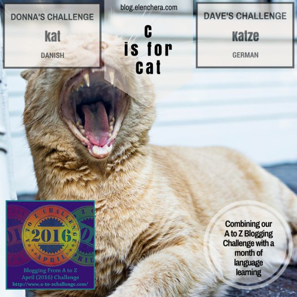A to Z Blogging Challenge: C is for Cat #atozchallenge