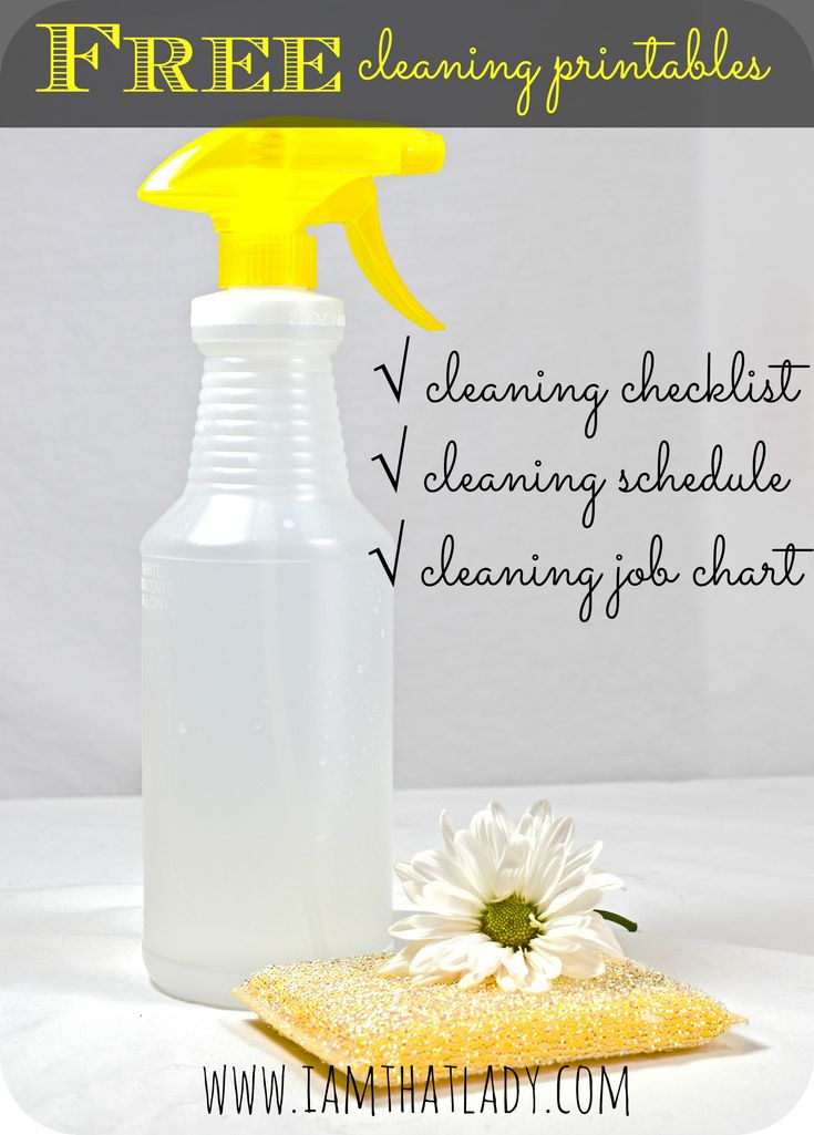 Are you looking for a daily cleaning list? Here you can get FREE printable lists that include cleaning chart, checklist and more!
