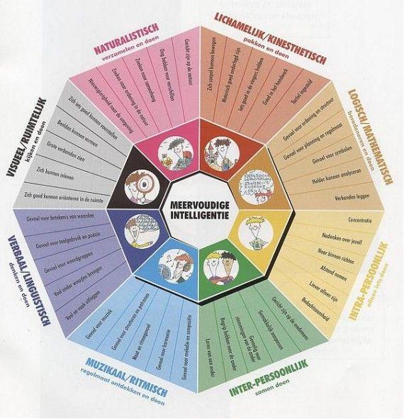 De verschillende meervoudige intelligenties in een mooi wiel gegoten. #meervoudigeintelligentie