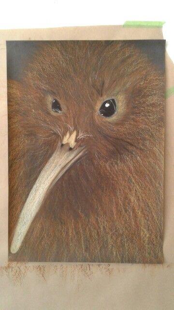 Nz Kiwi with Oil Pastel
