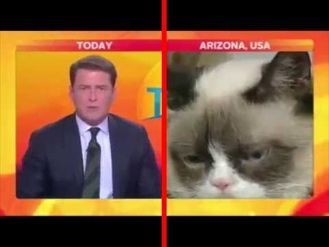 The Best NEWS BLOOPERS Caught on LIVE TV Ever