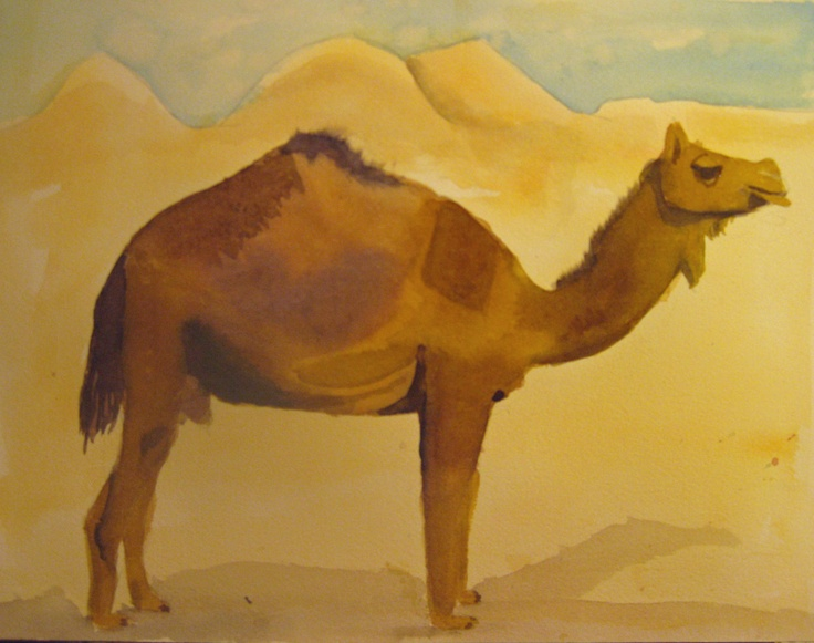 Dry desert - a camel in watercolour