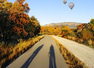 Paseo del Bosque Trail, New Mexico http://www.rodalesorganiclife.com/wellbeing/10-best-car-free-bike-paths-in-the-usa/paseo-del-bosque-trail-new-mexico