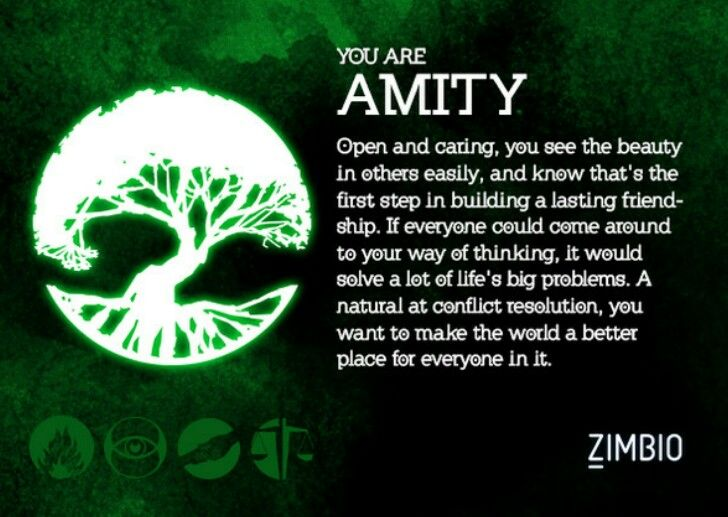 I Took Zimbio And AMC Theatreu0027s U0027Divergentu0027 Quiz, And Iu0027m Amity! Which  Faction Are You?