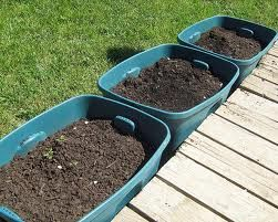 container vegetable gardening ideas - JUST TO START