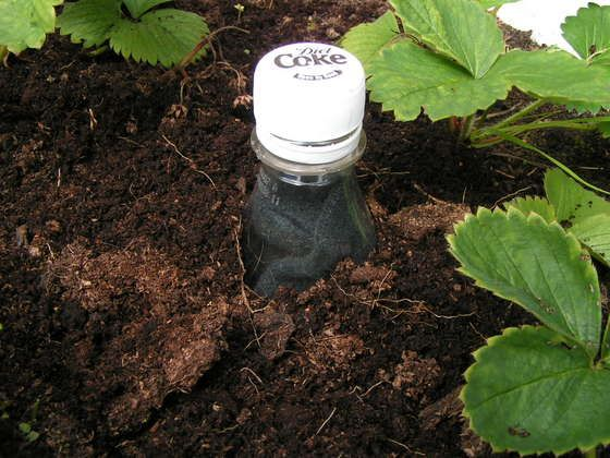 The Scrooge Bottle. Place a sock or other absorbent material into an empty plastic bottle, drill or poke holes, fill with water and bury near small plants. #waterconservation
