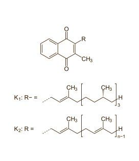 %TITTLE% -  The more vitamin K [structural formula on the right] you consume through your diet, the less likely you are to die from a heart attack or cancer. Spanish epidemiologists made this discovery after following 7216 people over the age of 55 for five years. The researchers believe that raising your... - http://carmige.com/live-longer-if-your-diet-contains-lots-of-vitamin-k.html