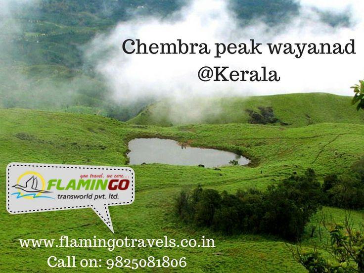Visit Chembra peak in wayanad with #keralatourismpackages For more details: http://goo.gl/NPJ4C9
