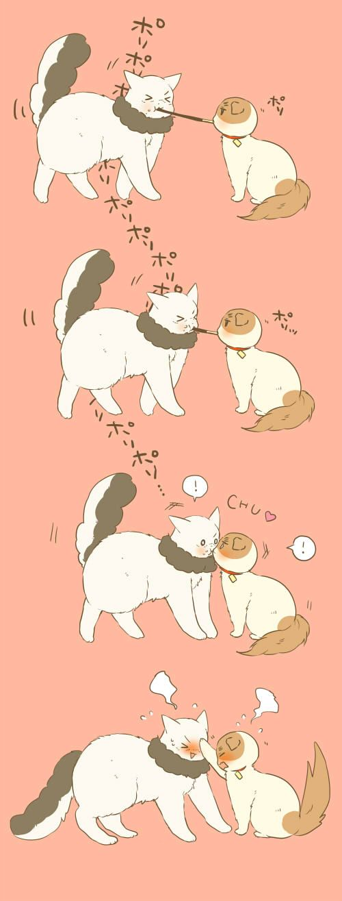 haha looks like Hetalia kitty version of Lady and the Trap