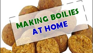 Learn how to make carp boilies at home.