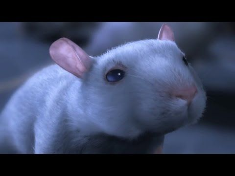 """CGI 3D Animated Short HD: """"One Rat Short Film"""" by CHRLX and Alex Weil - YouTube"""