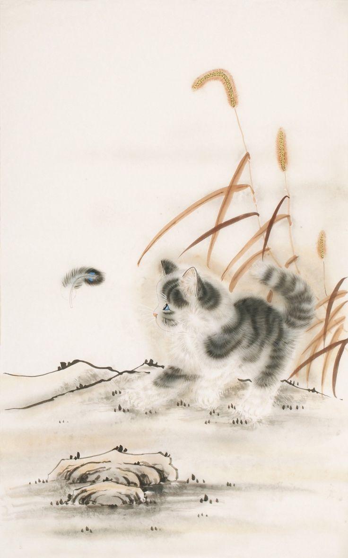 Cats - CNAG000790