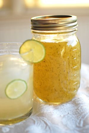 Homemade key lime syrup for use with a soda stream. Other recipes for homemade syrups too. We are debating getting a soda stream.  Do any of you have one? And do you like it?