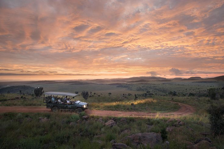 What's your favourite time of day for a safari?  Choose your safari: