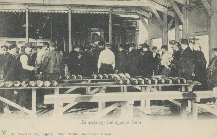 Het zalmafslag-gebouwtje bij het Zalmhuis, aan het Kralingseveer, voorheen een centrum van zalmvangst en zalmmarkt. Mede ten gevolge van de normalisatie van de Rijn en de vervuiling van het rivierwater is de zalmvisserij verdwenen en het zalmafslag-gebouwtje in 1932 afgebroken. (datering: 1900, pbk 6075)