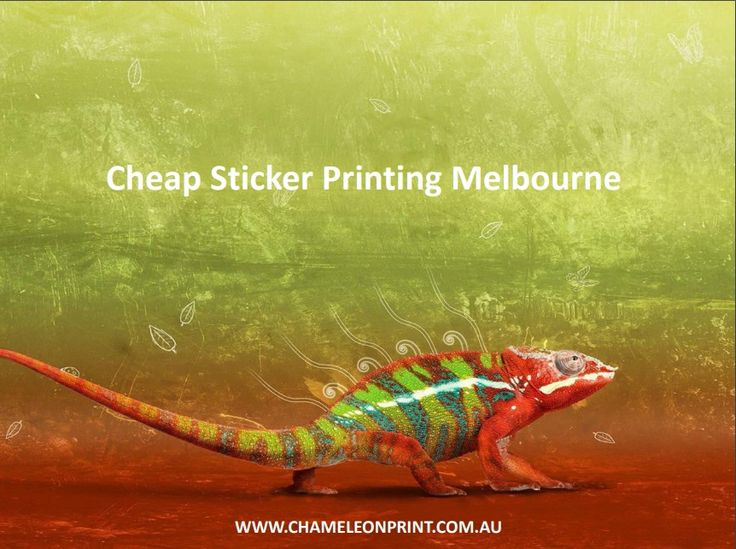 Because of our flexibility in Sticker Printing Australia, we are able to offer competitive prices and turnarounds on all types.  Whether it's a sticker for your Cheap Sticker Printing Melbourne, or a label for a supermarket shelf.