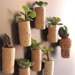 These cork planters are easy to make and make awesome fridge magnets. They'd also make for great upcycled gifts.