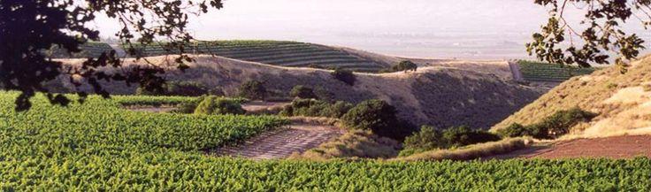 Santa Lucia Highlands Pinot Noir - Monterey CA
