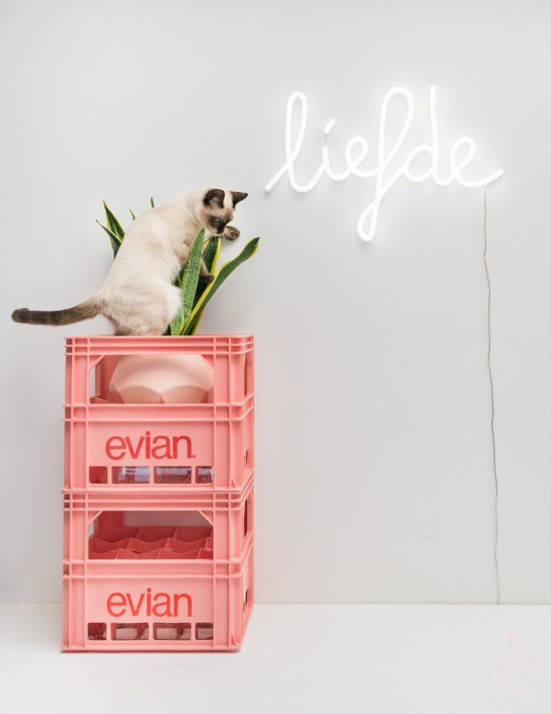 11 best Interieur katten images on Pinterest | Kitty cats, Kitty and ...