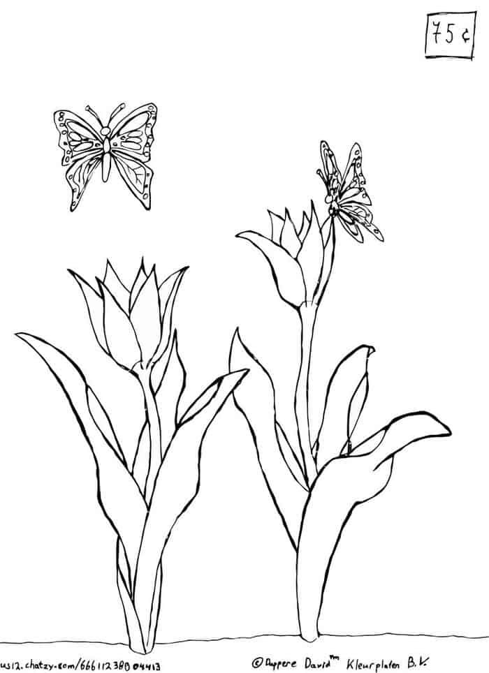 Tulip Butterfly Coloring Pages In 2020 Butterfly Coloring Page Flower Coloring Pages Coloring Pages