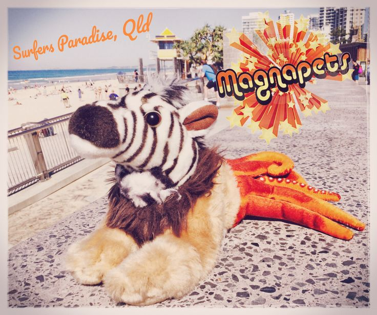 A collection of original Magnapets Postcards and Polaroid promo pictures from 1980-84. Look out for the re-issue of this iconic soft toy in late 2017! Brought to you by www.magnapets.com