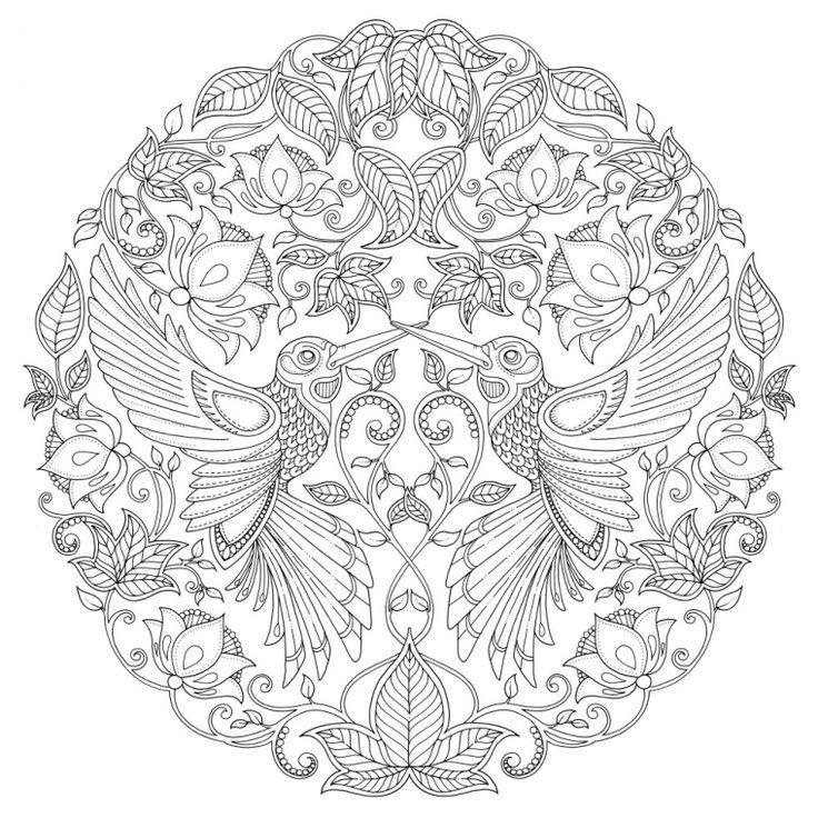 9d22f7ed2f8b6bd35b0e9e0a5552551b Jpg 736 X 736 Shablony Dlya Rospisi Vogel Malvorlagen Kostenlose Ausmalbilder Mandala Malvorlagen