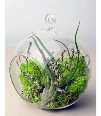 光と水と空気が循環できるガラス容器ならではのエコシステムで、生命の素晴らしさにも気づかされるテラリウム。是非作ってみて、お部屋に小さな自然の世界を取り入れてみてくださいね。