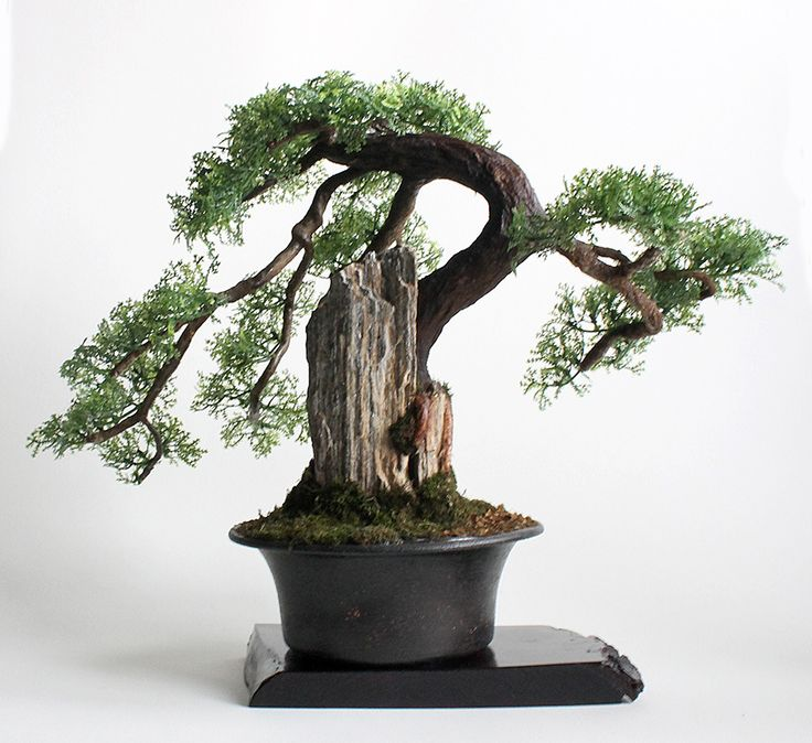 Artificial bonsai Zokei style and Sekijōjū combined with the style of Suiseki. Made by hand in Studio Art Dragon.