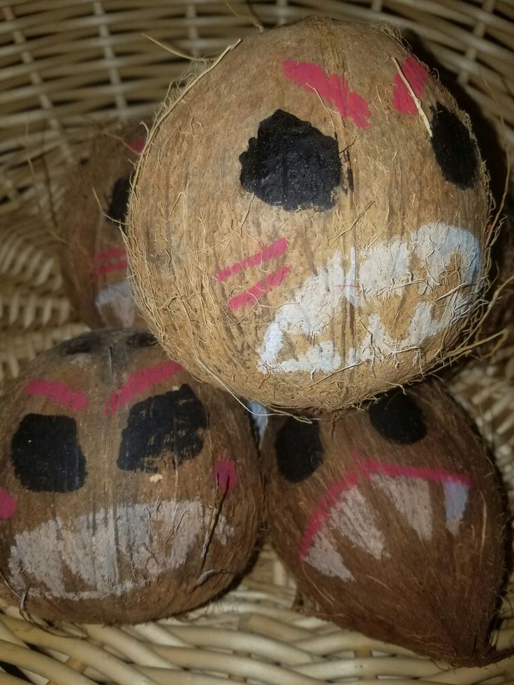 Kakamora coconut pirates made using real coconuts and paint markers from the craft store. Moana birthday party