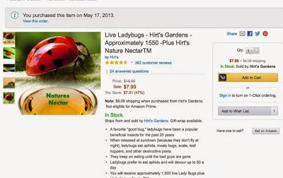 how to order live ladybugs