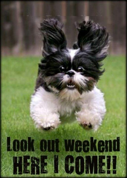 Look out weekend here I come!!