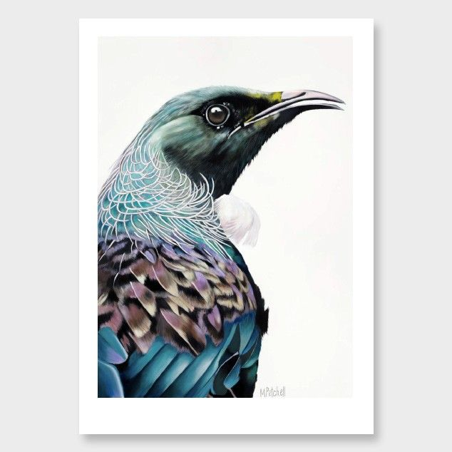 'Jefri' Tui Art Print by Margaret Petchell