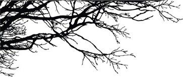 Tree Top Branches Wall Decal contemporary-wall-decals