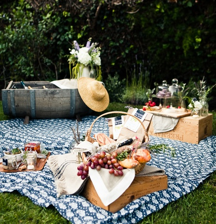 provence pic nic
