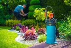 Troubled with pests, try these basic things for a cleaner safer household. www.gapoon.com