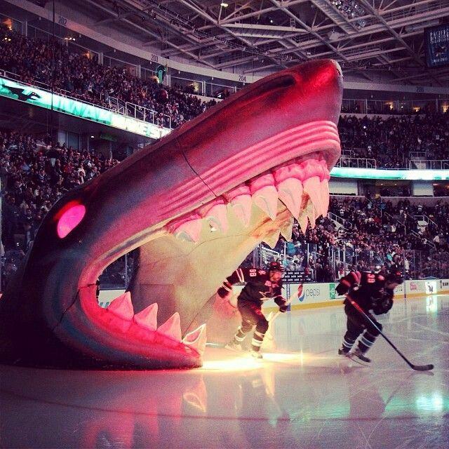 SAP Center - San Jose Sharks arena