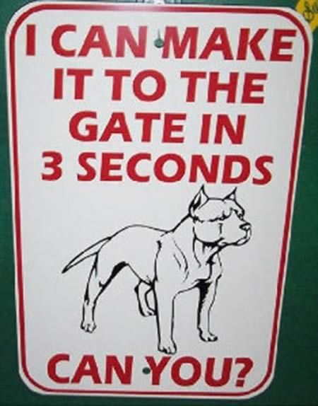 12 Hilarious Dog Signs