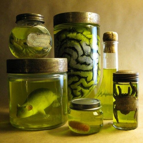 "DIY Halloween Specimen Jars Tutorial from Dave Lowe Design here. He tells you exactly how to get the ""formaldehyde"" color using food coloring, and goes through each jar telling you what is in each one - and you will be surprised that one is a Nerf football and another a simple pipe cleaner."